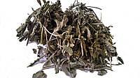 Шалфей лекарственный листья 100 грамм (Salvia officinalis, folium Common Sage)