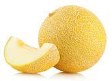 Дыня — польза и лечебные свойства дыни. Как выбрать спелую дыню