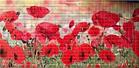 Листові панелі ПВХ Регул мозаїка Маки 957*480 мм