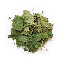 Листья березы сушеные - (50 г.) + консультация