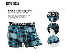Мужские трусы боксеры KEVEBRON (XL-4XL)  Арт.KV09015, фото 3