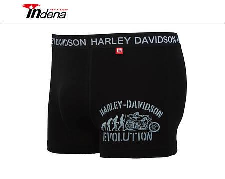 Мужские стрейчевые боксеры «INDENA»  АРТ.95042, фото 2