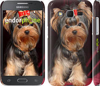 "Чехол на Samsung Galaxy Core Prime G360H Йоркширский терьер ""929c-76"""