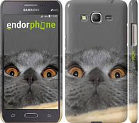 "Чехол на Samsung Galaxy Grand Prime G530H Смешной кот ""2856c-74"""