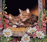 Схема на габардине авторская канва «Сладкий сон» Кот