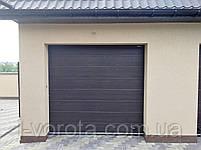 Секционные гаражные ворота DoorHan ш2500мм, в2000мм, фото 3