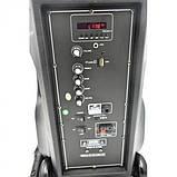 Акустична система з двома радіомікрофонами LiGE-AJ15DKS 15 дюймів Супер звук!, фото 3
