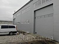 Секционные промышленные ворота с панорамной панелью DoorHan ш3200мм, в3200мм, фото 2