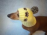 Шапка для собаки,шапка для таксы,одежда для домашних животных, фото 3