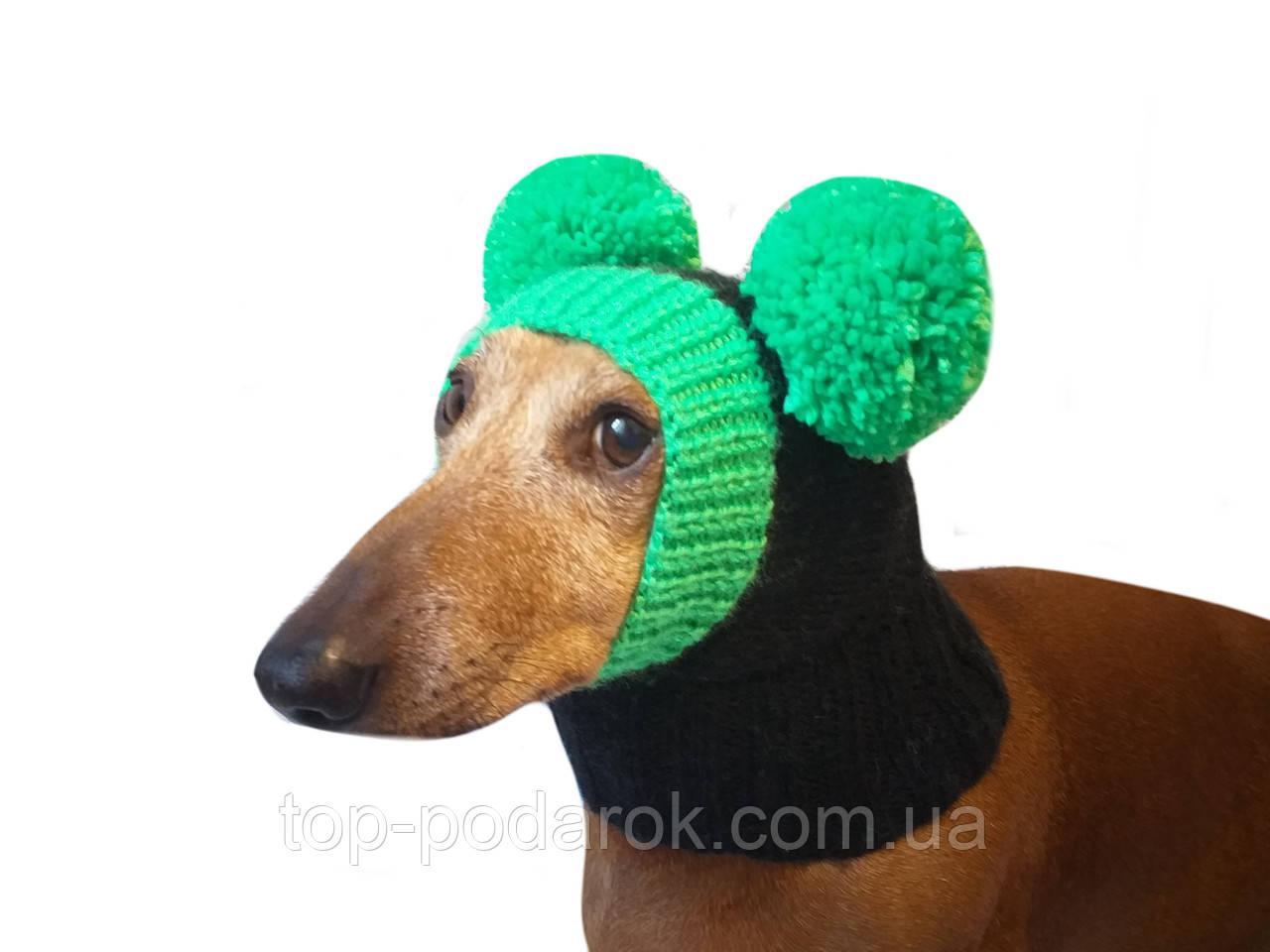 Зимняя шапка для маленькой собаки с двумя большими помпонами