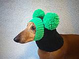 Зимняя шапка для маленькой собаки с двумя большими помпонами, фото 2