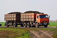 Перевозка свеклы зерновозами