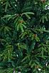 Искусственная елка Рождественская LED 180 комбинированная с лампочками, фото 4
