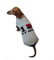 Свитер для таксы *Я люблю свою собаку*