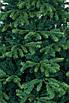 Искусственная елка литая Грация 210 комби, фото 4