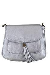Жіноча шкіряна сумка NIVES diva's Bag колір срібний