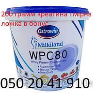 Милкиленд сывороточный протеин КСБ 80% белка  Milkiland Польша 4.5 кг