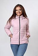 Демисезонная женская куртка увеличенных размеровв пудровая размер 50,52
