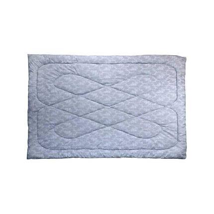 Одеяло силиконовое Руно Вензель серое демисезонное 200х220 евро, фото 2