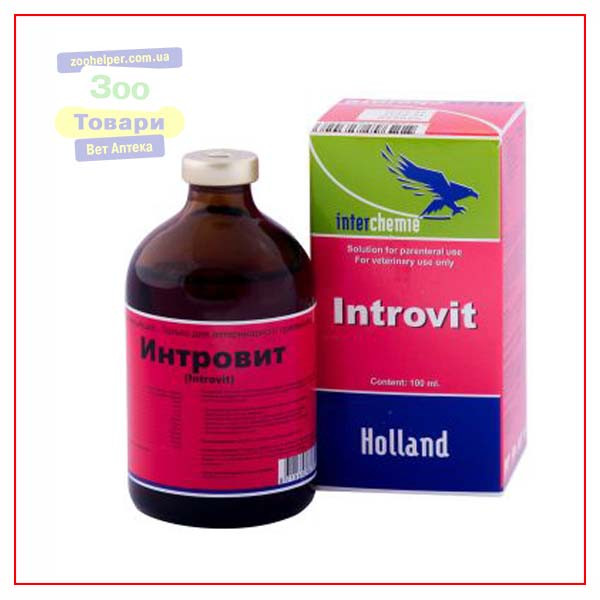Интровит 100 мл (Interchemie)