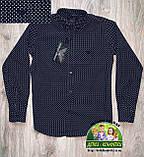 Рубашка Armani черная с белой точкой 7-8 лет, фото 2