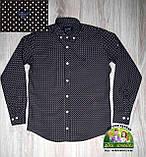 Рубашка Armani с длинным рукавом темно-коричневая с белой точкой, фото 2