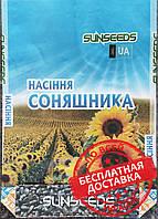 НС-Х-496 (Техн. SUMO, 50 грм) - (Стандарт) Семена подсолнечника.