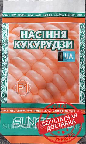 Гибрид -  Солонянский 298 СВ Посевные семена кукурузы., фото 2