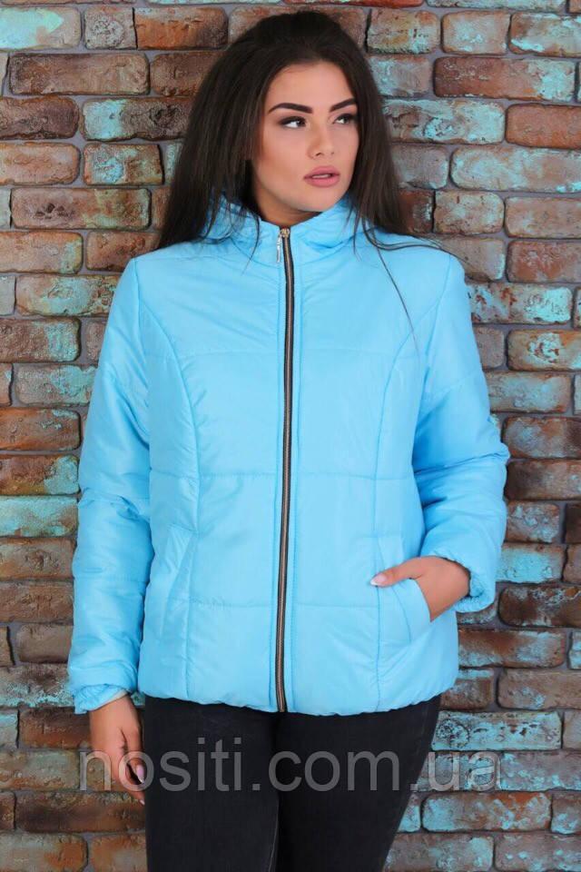 Голубая женская куртка батал 🌺 🌺 🌺