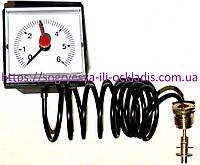 "Манометр 0-6 бар 45*45 мм 1000 мм 1/4"" (без фир.уп) котлов газовых, напольных, тверд, арт.0020027570, к.з.0318"