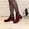 Ботинки бордовые женские   на каблуке, фото 5