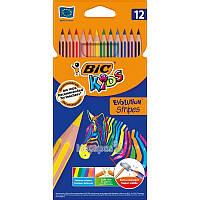 Карандаши цветные BIC Evolution Stripes 12 цветов 950522