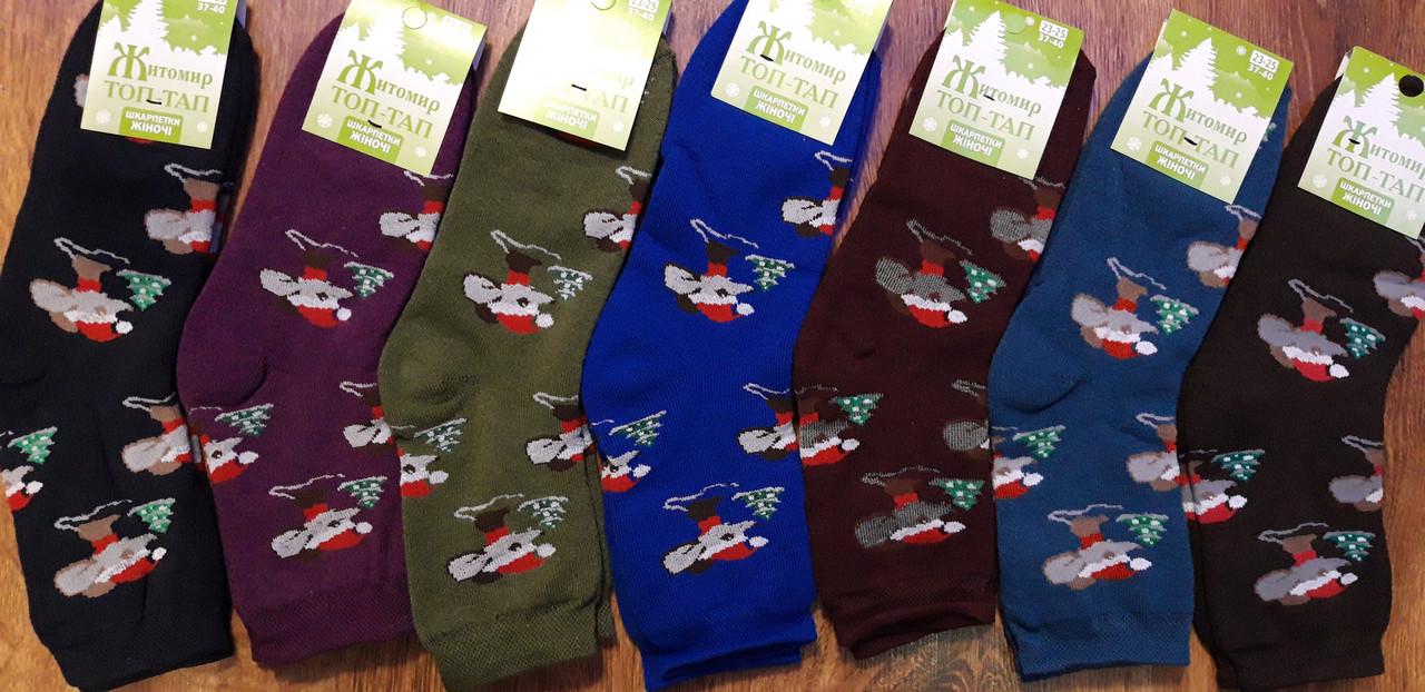 """Шкарпетки жіночі, махрові """"Топ-Тап Мишеня"""" асорті"""