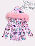 Курточка с натуральным мехом зимняя для девочки тм Моне р-ры 116,122, фото 5