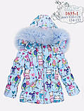 Курточка с натуральным мехом зимняя для девочки тм Моне р-ры 122, фото 3