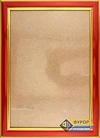 Рамка А4 (18,5х27 см) под вышитые схемы производства ТМ Фурор Рукоделия, Арт. ФР-А4-2077