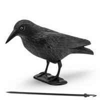 Ворона для відлякування птахів / Ворон для отпугивания птиц