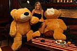 Огромный плюшевый медведь 200 см, фото 3