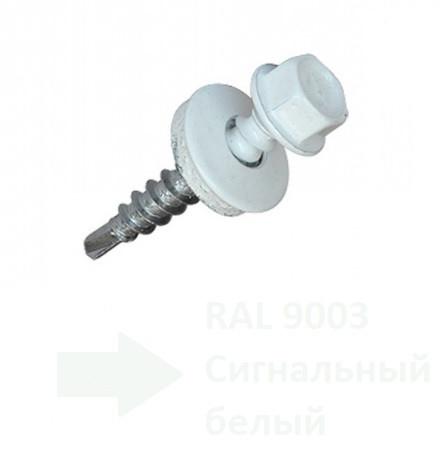 4.8х20мм Саморіз покрівельний пофарбований Цинк RAL 9003 (100 шт)
