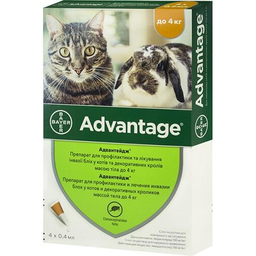 Капли От Блох Bayer Advantage 40 Для Кошек И Котят Менее 4 Кг (Цена За 1 Пипетку)