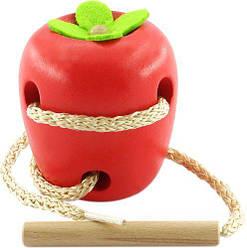 Шнуровка яблоко  sco