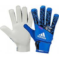 Вратарские перчатки ADIDAS ACE JUNIOR AZ3677