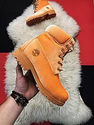 Жіночі черевики Timberland Off-White демісезонні (рижый)