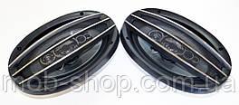 Автомобильные колонки динамики Pioneer SP-A6994 Овалы 600 Вт