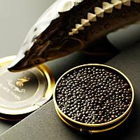 Черная икра: разновидности вкуса как изумительное наслаждение.