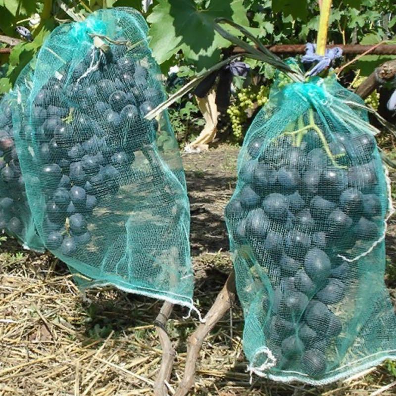 Сітка для винограду 50 шт (сітка-мішок для захисту від ос) 2 кг 22*28 см