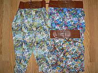 Штаны для девочек, Taurus,в остатке 6л., фото 1