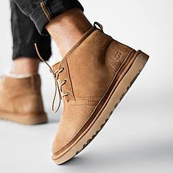 Мужские зимние ботинки UGG Australia Neumel Chestnut. Живое фото. Премиум реплика