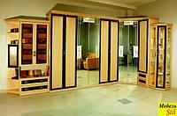 Двухспальная шкаф-кровать с зеркалом в, фото 1
