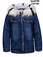Куртки на меху для девочек, Glo-story, в остатке 110, 110,120, 120,130рр